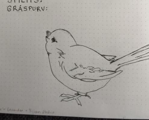 Småfugl